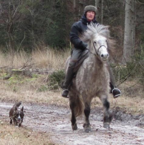 Met Hrim en Frodo in Drenthe, genieten