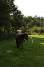 het belletje van de waterpas blijft recht boven je paard
